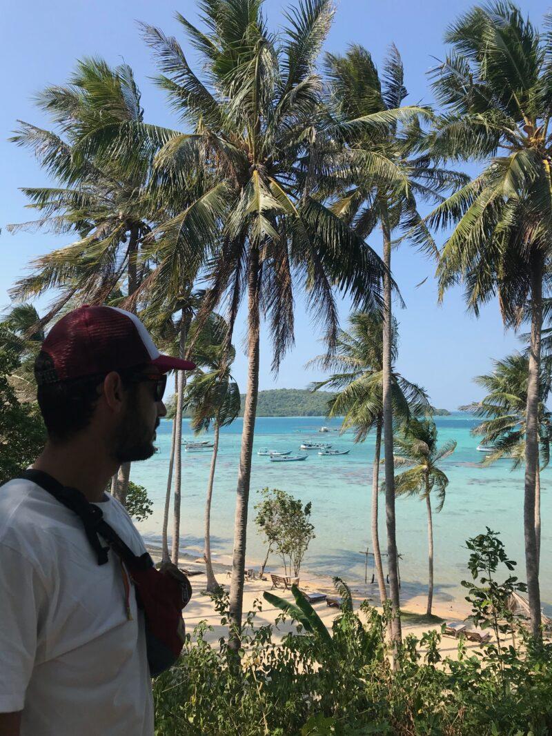 Vista de la playa desde el palmeral.