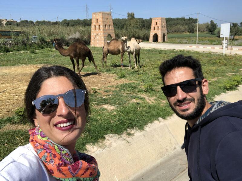 Top 4. Camellos camino a Meknes.